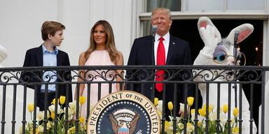 Die Trumps sind auf den Hasen gekommen