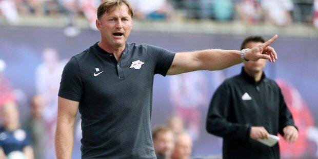 Hasenhüttl spricht über Teamchef-Posten