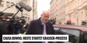 Grasser-Anwalt tappt in Gesetzesfalle