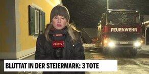 Familien-Drama in der Steiermark: 3 Tote