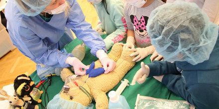 Im Wiener Teddybärspital wird wieder ordiniert