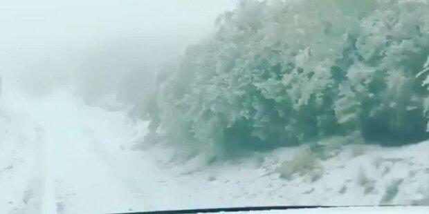 So tief herunter schneite es in Maui noch nie