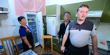 Nächste illegale Teigtaschen-Fabrik in Wien ausgehoben