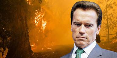 Schwarzenegger auf der Flucht vor Waldbränden