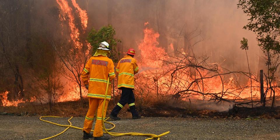 Forest fires AUstralia bushfire