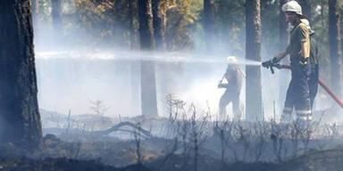 250 Feuerwehrleute bekämpften Waldbrand