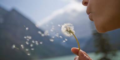 Allergien ganz sanft bekämpfen