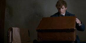 """Erste Szenen des """"Harry Potter""""-Prequel"""