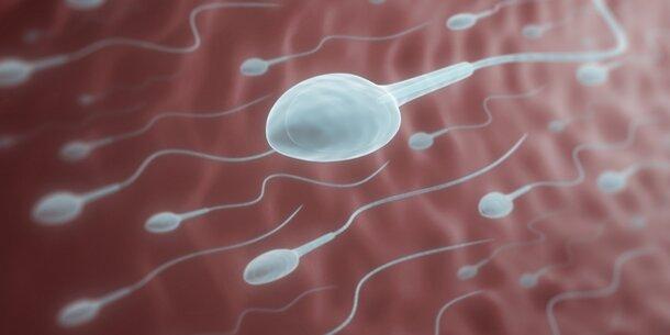 Sperma Flüssig Wie Wasser