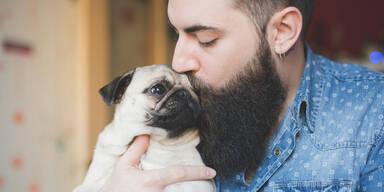 Mann Bart Hund