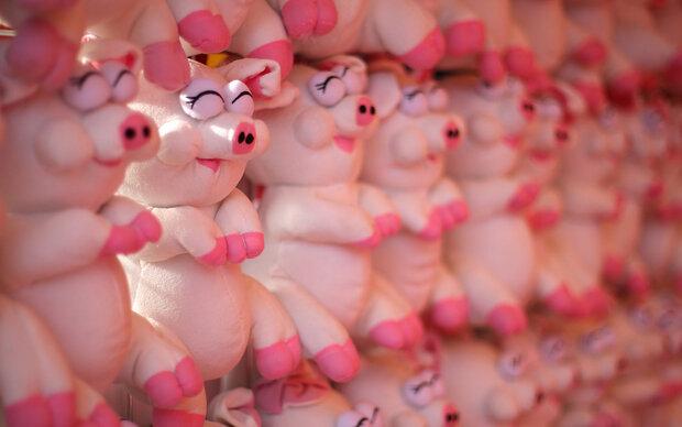 'Jahr des Schweins' beginnt am Dienstag
