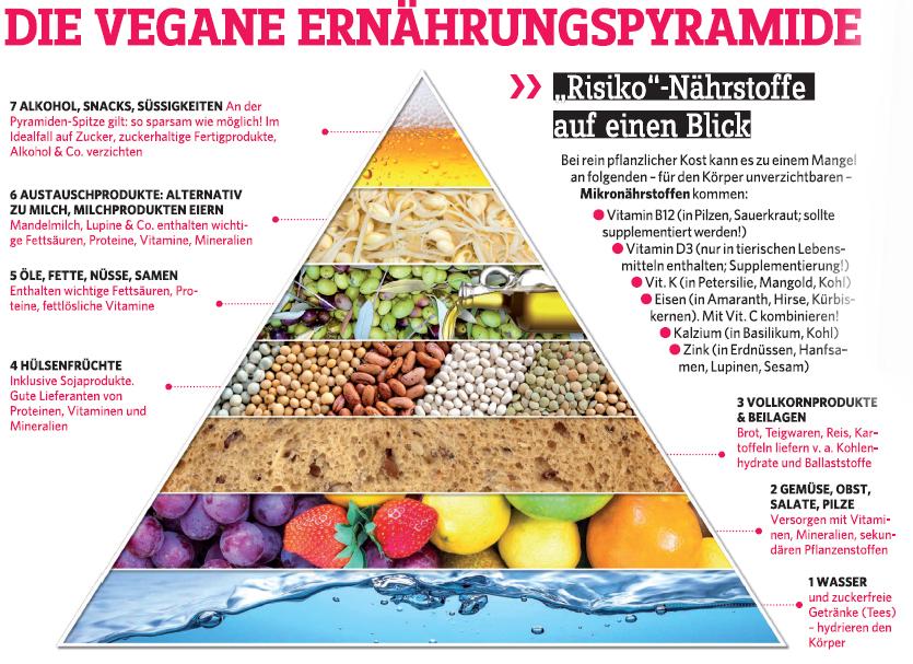 Ernährungspyramide Vegan
