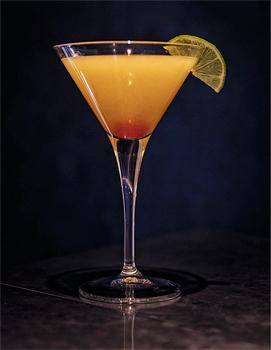 Gin-Rezepte