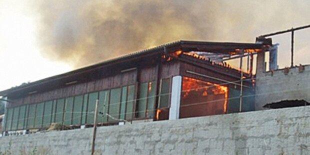 35 Kühe aus brennendem Stall gerettet