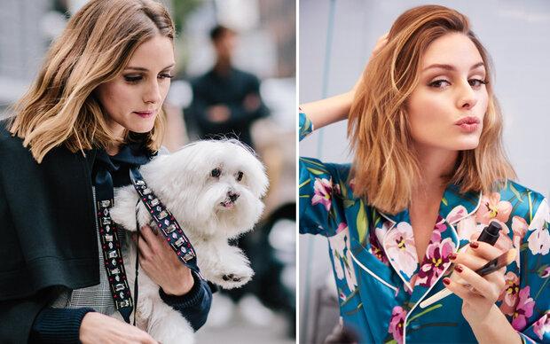 Stilikone Olivia Palermo im Beauty-Talk