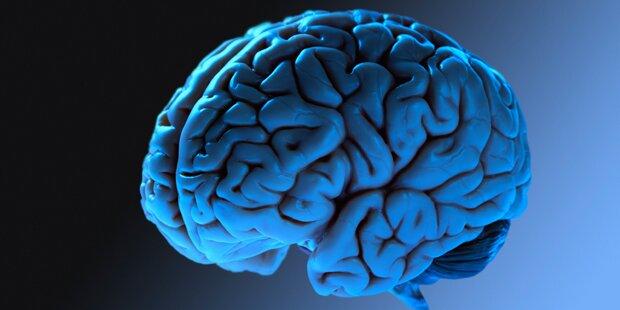 Klinik lagert 3.000 Gehirne in Plastikbehältern