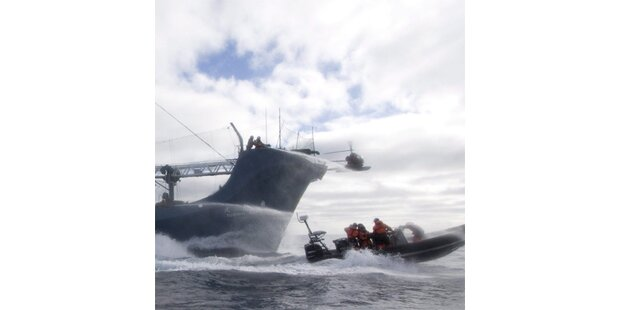 Walfangschiff kollidiert mit Tierschützern