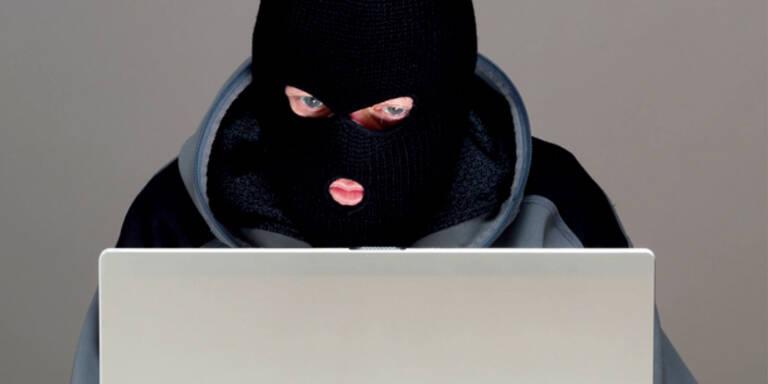Cybercrime: Polizei forschte 28 Hacker aus
