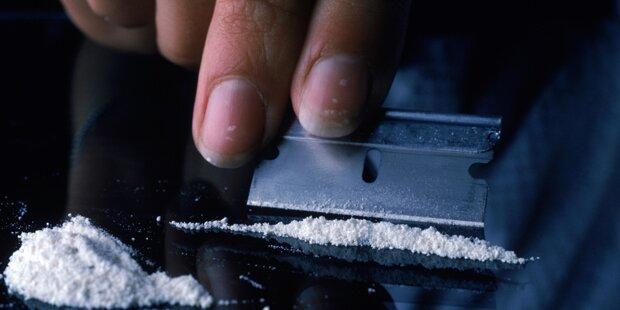 70 Kilo Kokain in Avocado-Lieferung entdeckt