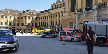 60-Jähriger bricht vor Schönbrunn zusammen – tot