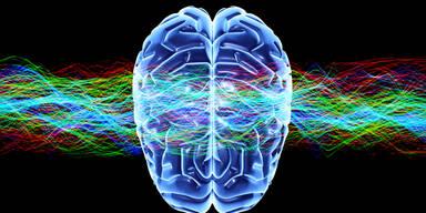 Diese Angewohnheiten schaden dem Gehirn