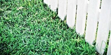 Schatz, den Rasen kann ich jetzt nicht mähen!