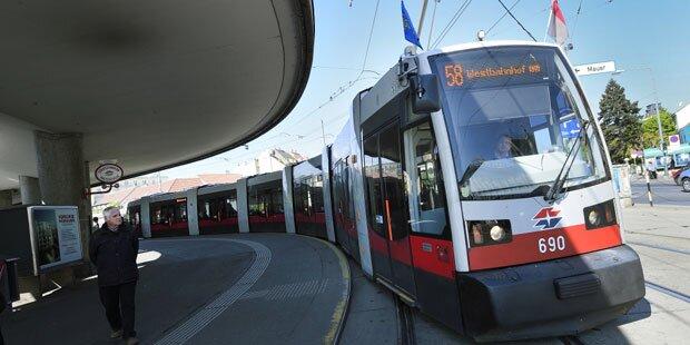 Wien: Der