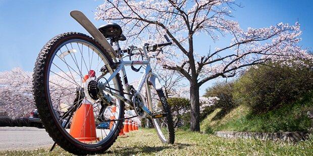 Tipps zu Transport & Helmpflicht