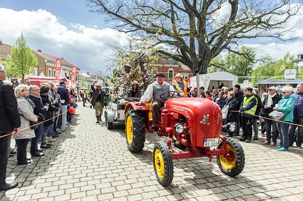 Baumblütenfest in Werder (Havel)