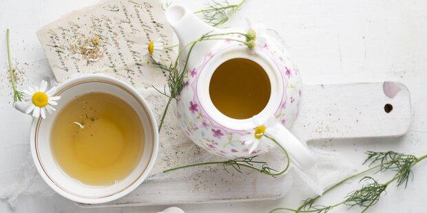7 Fakten über Tee, die nicht jeder weiß