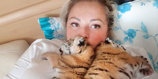 Tiger-Babys Hainburg Yagmur S.