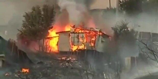 Chile: Waldbrände verwüsten Siedlungen