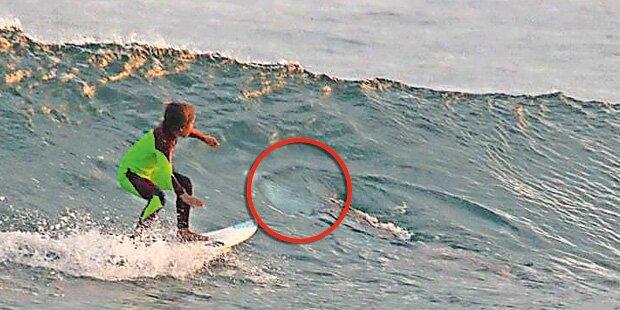 10-Jähriger surft Hai über den Kopf