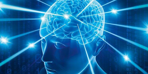 Epilepsie: Kurzschluss im Gehirn