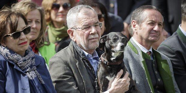 """Österreich hat einen neuen """"First Dog"""""""