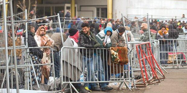 Wettlauf um härteren Asyl-Kurs