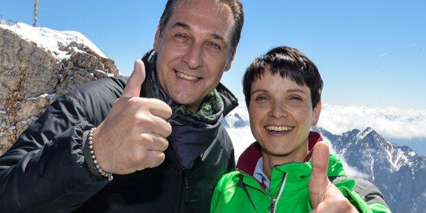 Petry und Strache: Mega-Krach wegen diesem Foto
