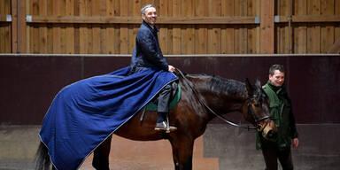 Wie geht es jetzt mit Kickls Pferden weiter?