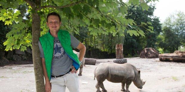 Er lebt seit einer Woche im Zoo
