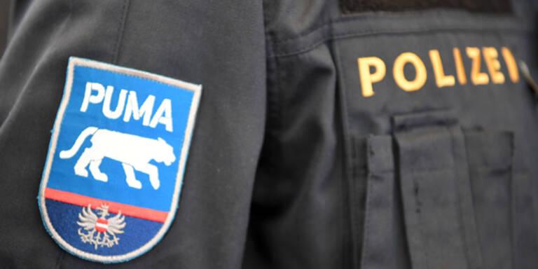 """Wirbel: Kickls """"Puma""""-Logo kam von FP-naher Agentur"""