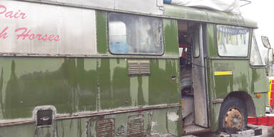Gleinalm Schweden A9 Pferde Laster Bus