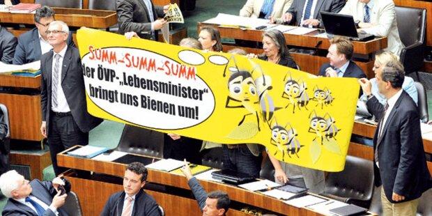 Biene-Maja-Show im Parlament