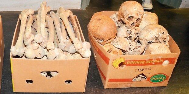 Totenkopf-Sammler heute vor Gericht