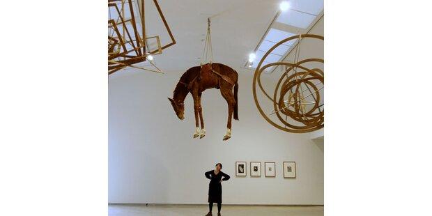 Wieso hängt hier ein Pferd vom Plafond?