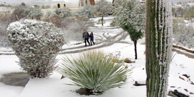Bis zu 60 Zentimeter Schnee in Arizona