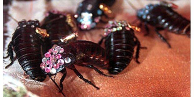 Kakerlaken Mode mit Swarovsky Glitzer