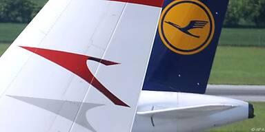 AUA und Lufthansa wieder im Aufwind