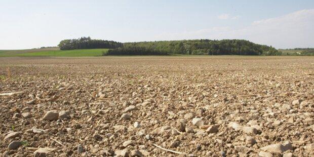 Bauer entdeckte Panzerfaust-Granate auf Feld