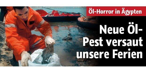 Neue Öl-Pest versaut unsere Ferien
