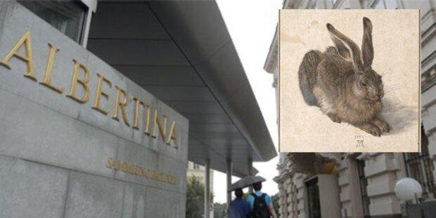 Albertina zeigt Dürers Feldhasen